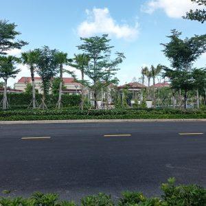 bán dinh thự big villa g.05.03 swanpark 1b